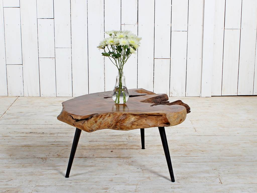 Organic Furniture Teak-Root-Coffee-Table